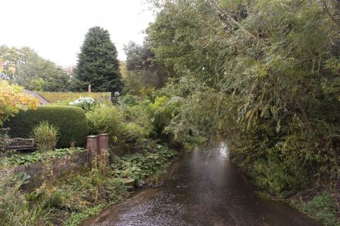 River running through corpusty