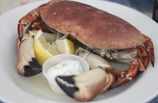 Cromer crab on a plate