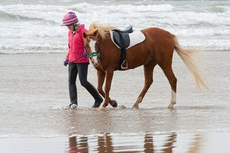 Woman and horse walking on the beach