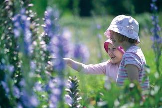 Children with Norfolk Lavender
