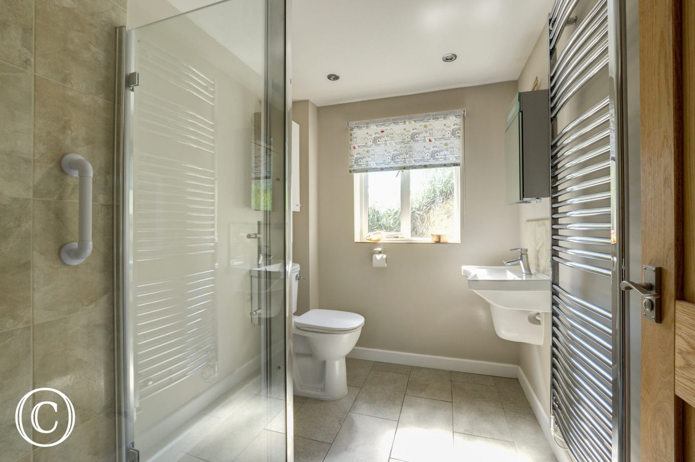 Bathroom with shower, basin and wc