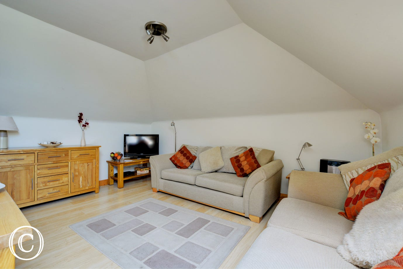 The spacious living room has comfortable seating and a TV