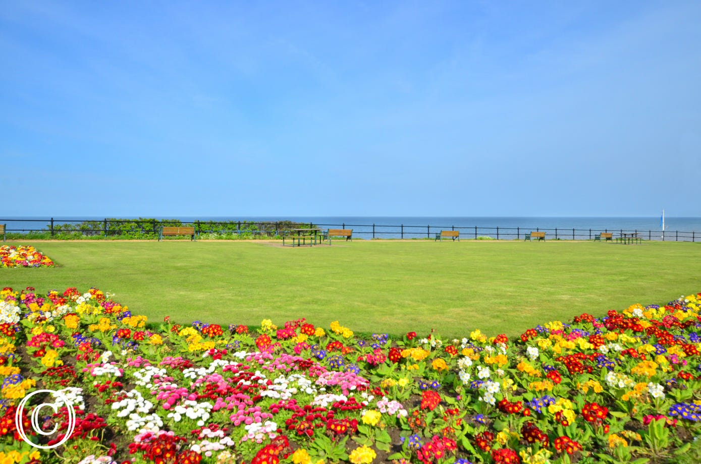Beautiful floral display and views to the sea.