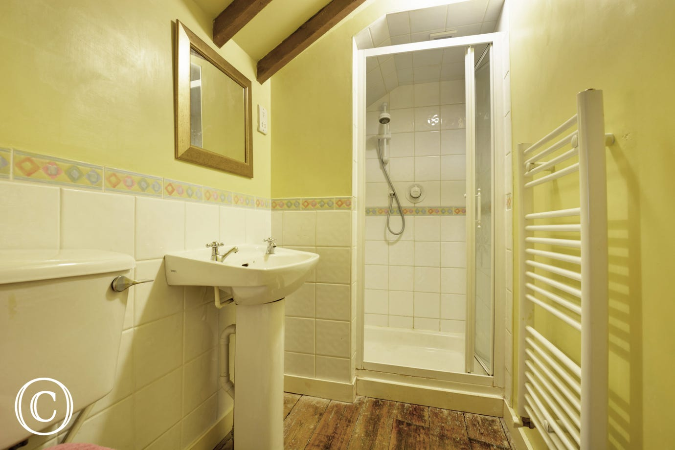 Shower room with cubicle and sloping ceiling.