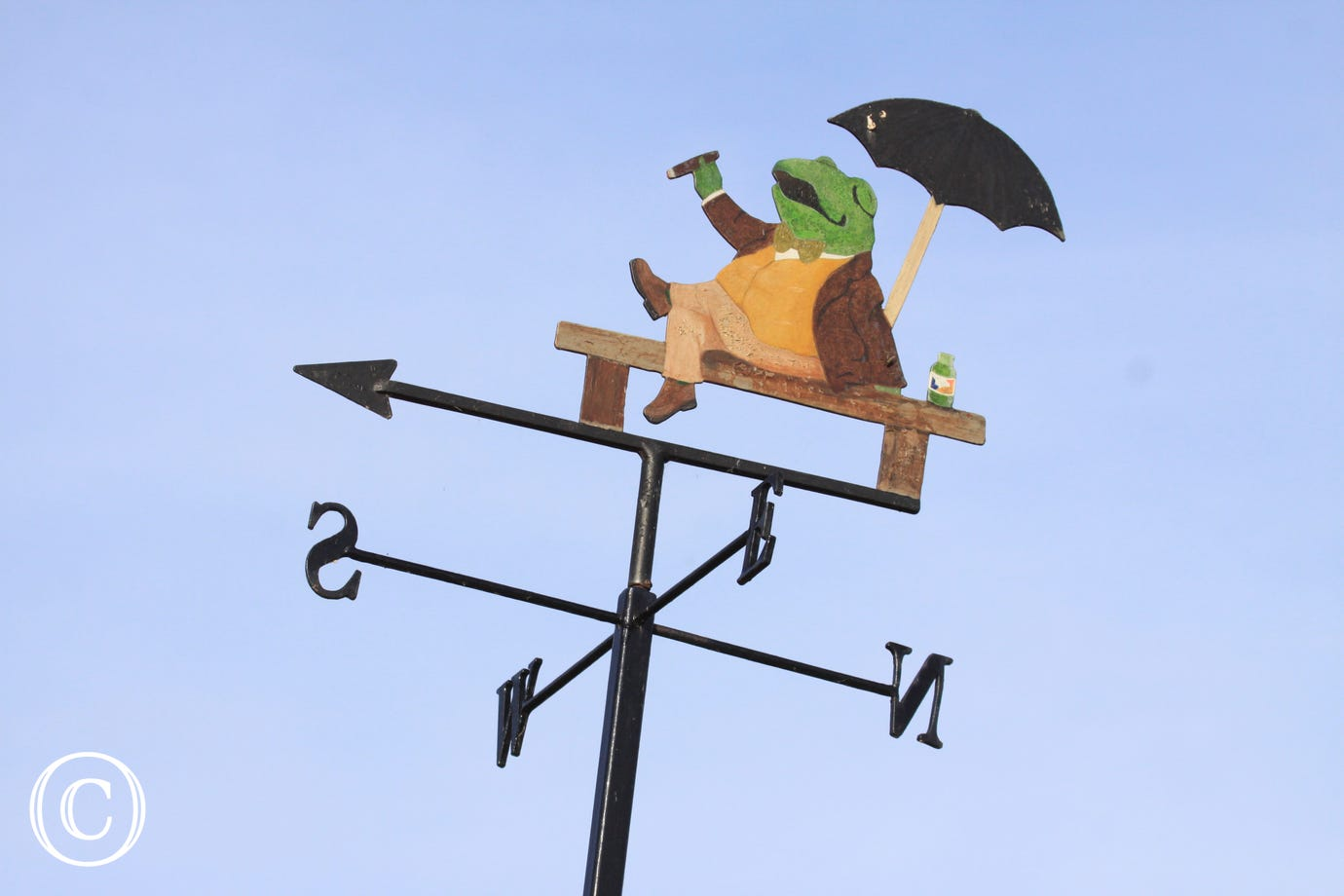Mr Toad keeps look out on the weather vane