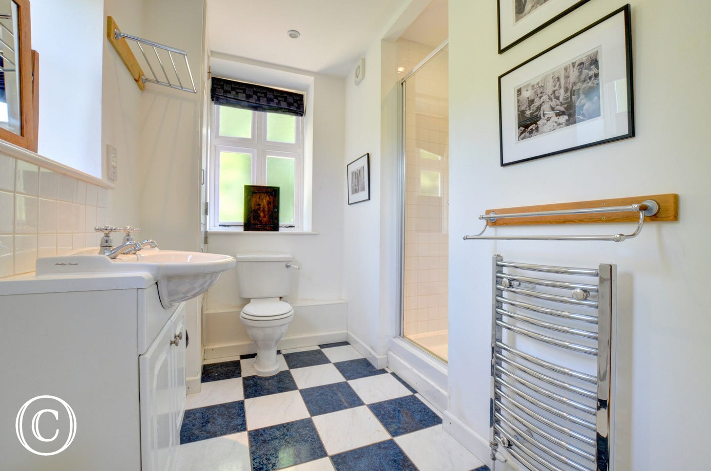 Shower Room  with large shower cubicle, washbasin and wc