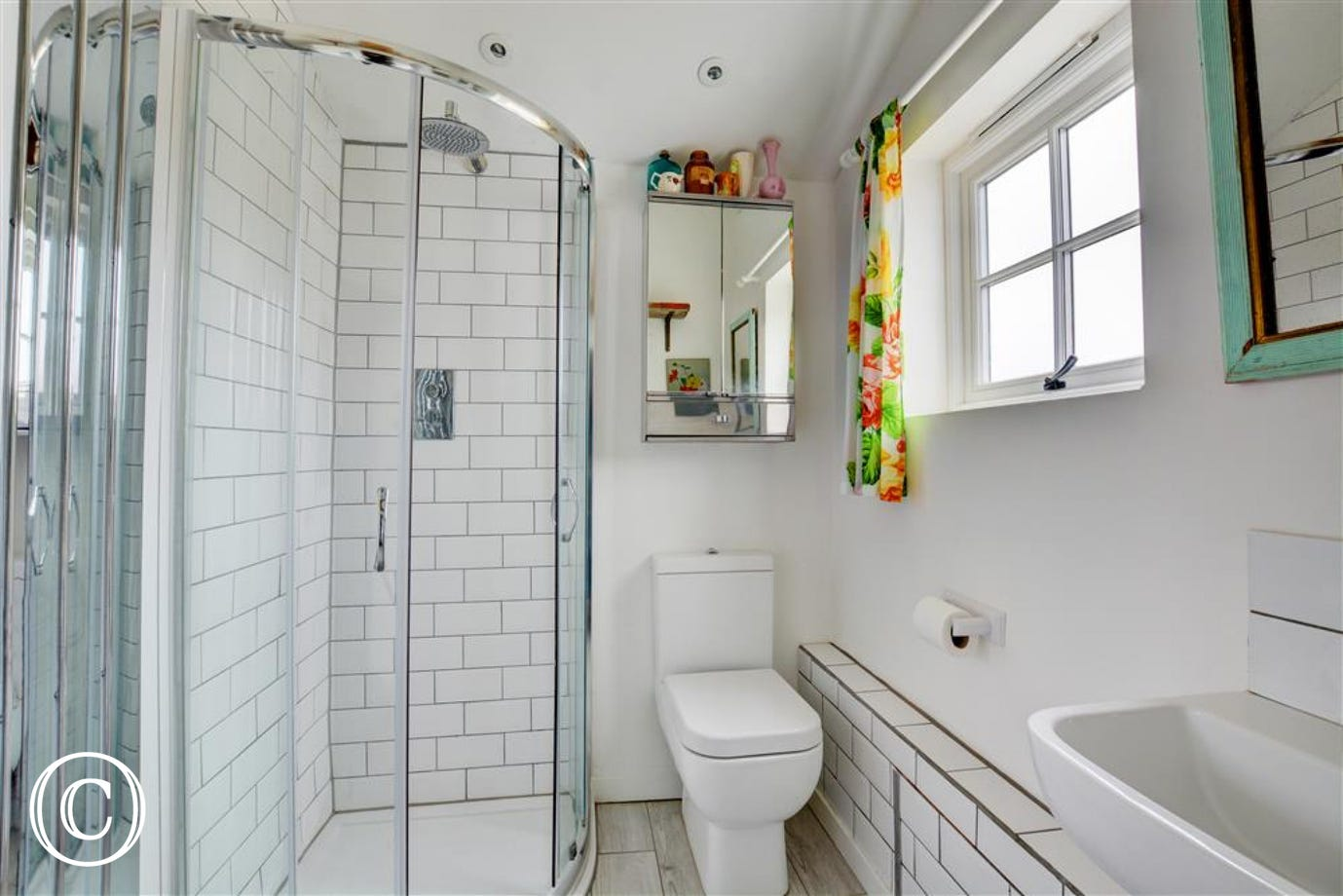 Shower room with shower cubicle and WC