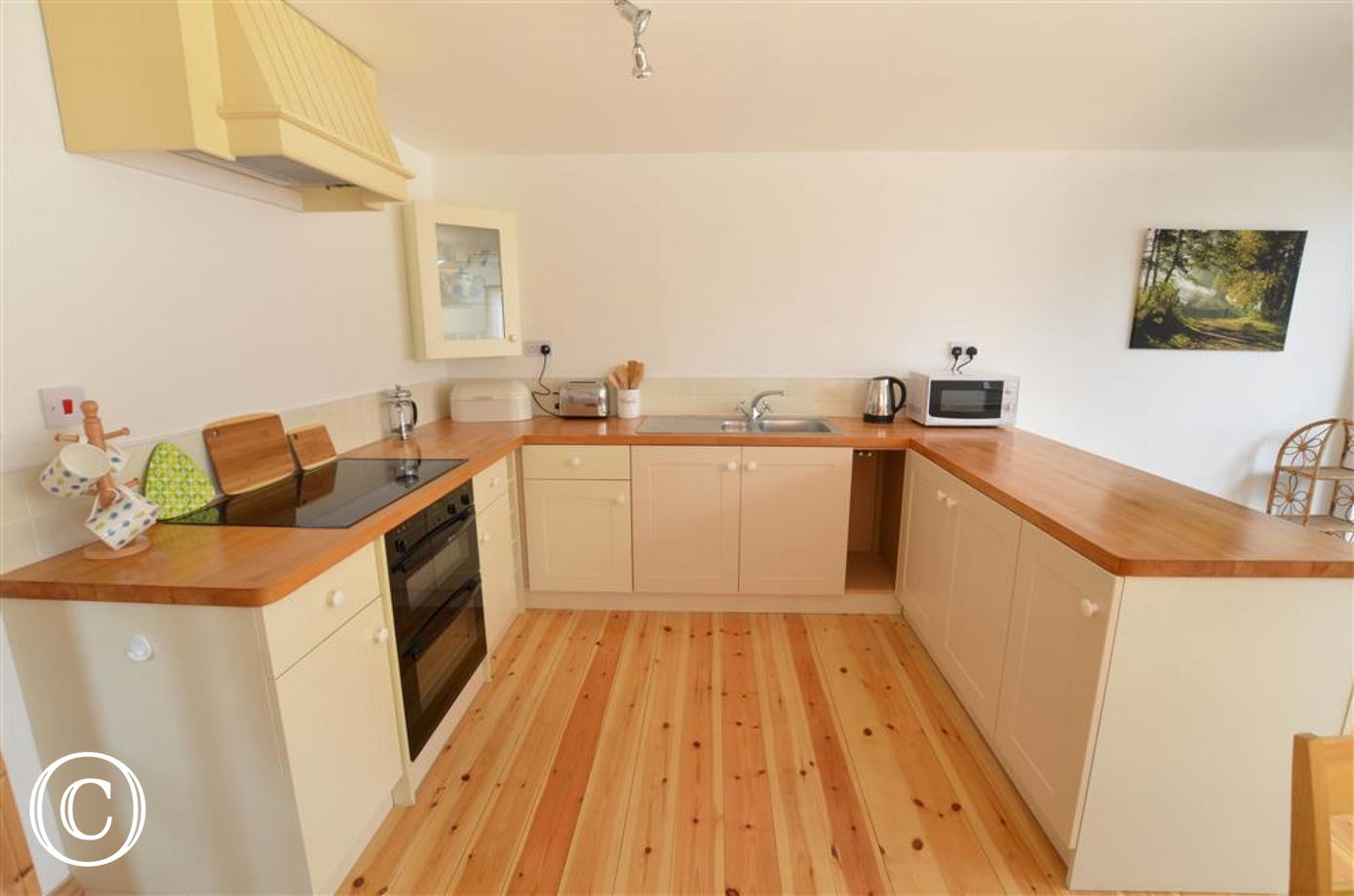 Well equipped kitchen with electric oven and hob