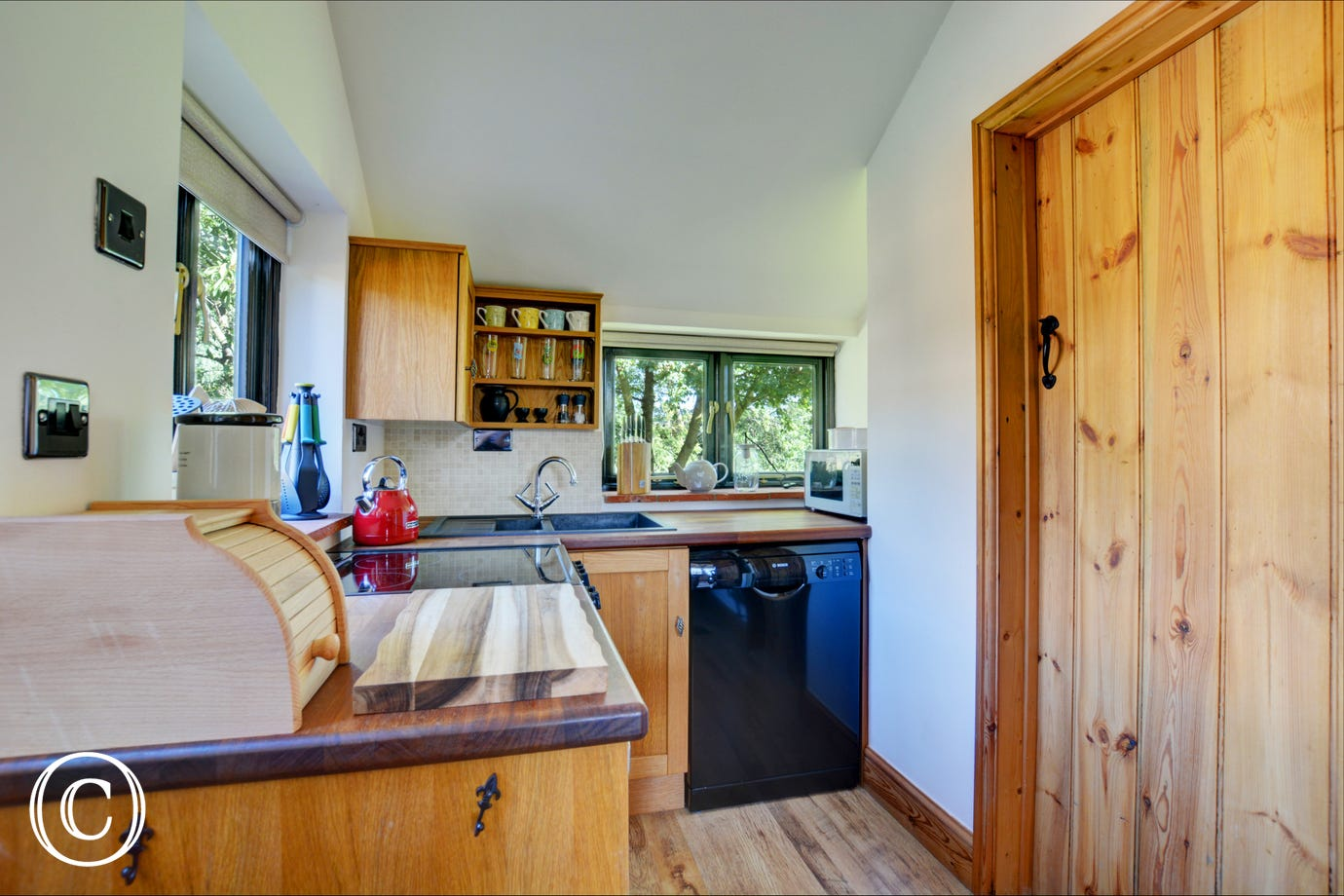 Kitchen  with electric cooker, fridge with icebox, dishwasher, microwave.