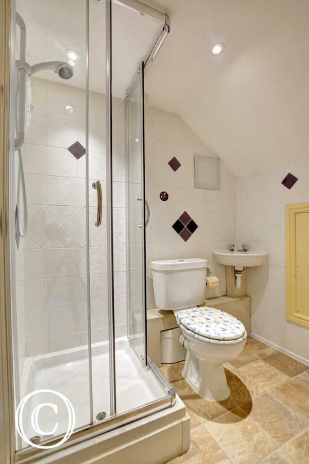 Shower Room with washbasin, wc