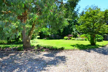 Pretty garden with mature trees and shrubs and gravel driveway.